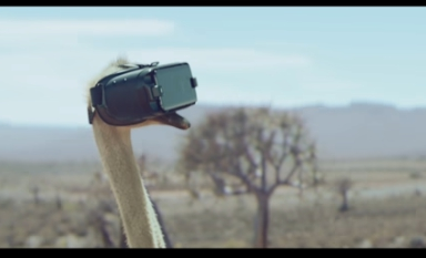 [cm]Galaxy S8のダチョウcm