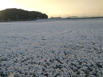 [雪]雪化粧の朝、10年ぶりに平常心で出勤できました!