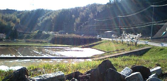 徳島県南で田植えが始まりました